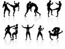 Combat Judo Karate Arnis Guide